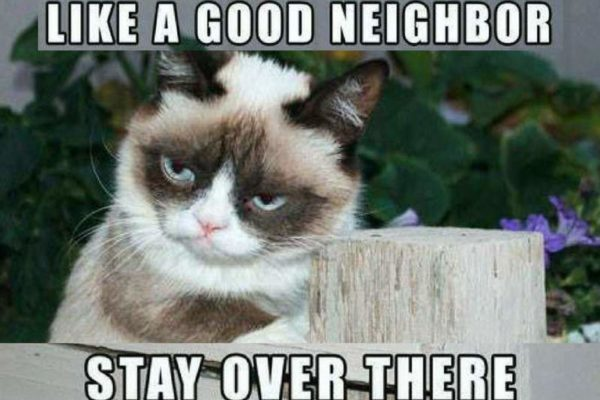 how to be sarcastic like grumpy cat